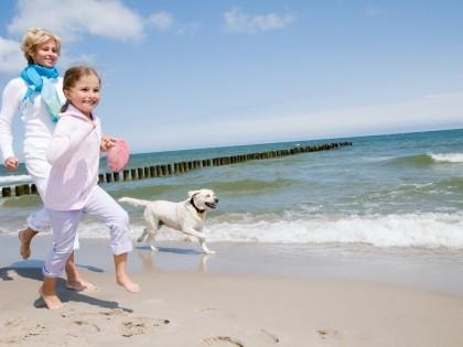 Des vacances sans soucis pour votre chien ou chat