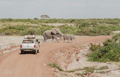 Explore: voyage en Afrique