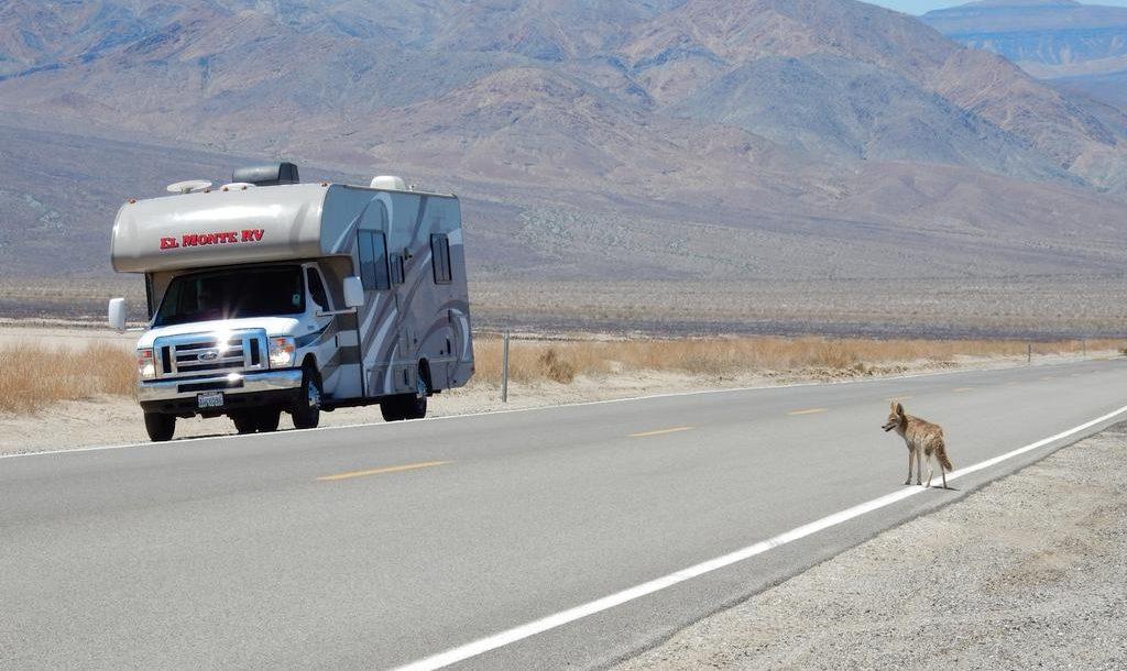 Conduire aux Etats-Unis: quelques conseils utiles