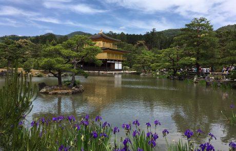 A la découverte du Japon: quelques conseils de voyage