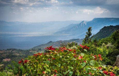 Julie et Michel partagent en photo leur voyage au Kenya