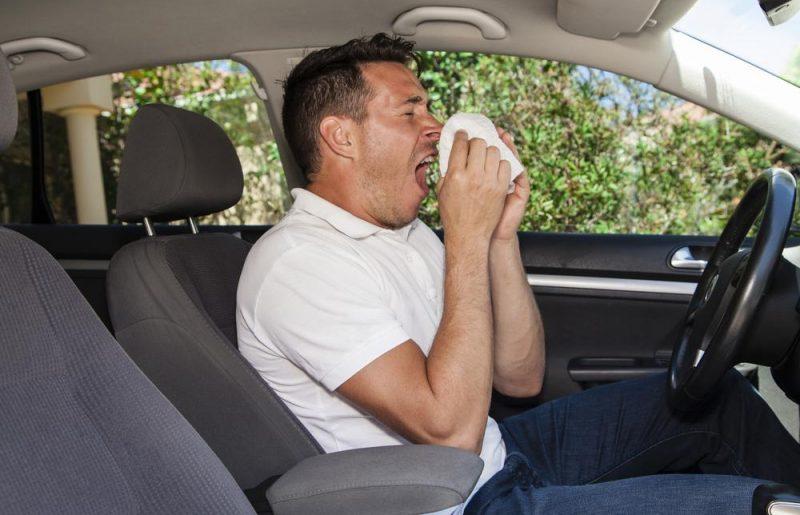 Autorijden met hooikoorts: gevaarlijk?