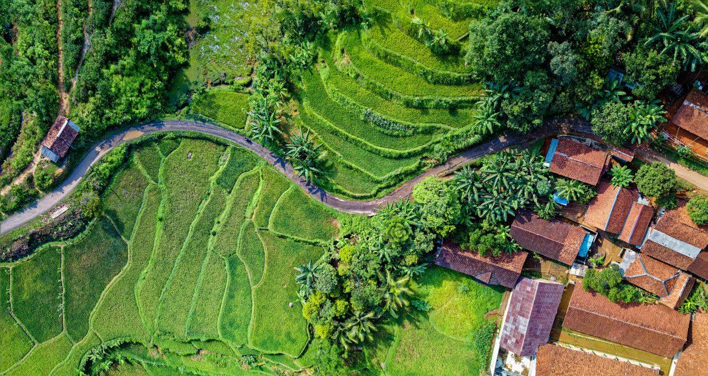 Voyager en Indonésie : informations pratiques