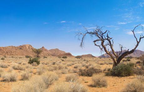 Op reis in Namibië: praktische informatie