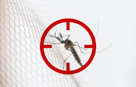Paludisme, comment éviter de le contracter ?