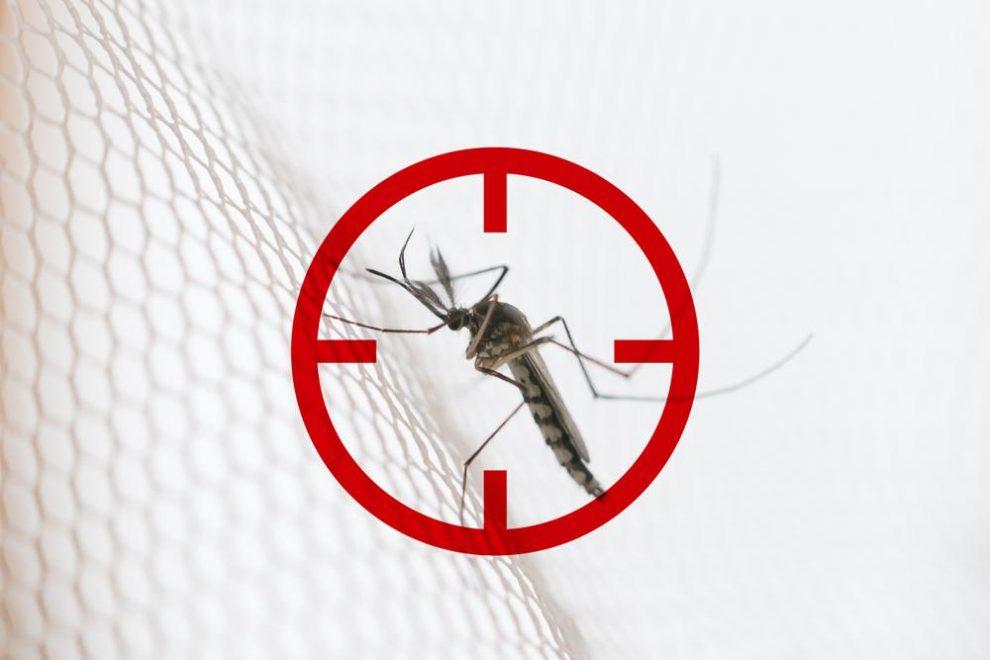 Hoe kan men malaria vermijden?