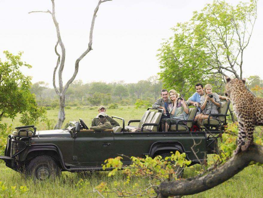 Op safari gaan: nuttige weetjes