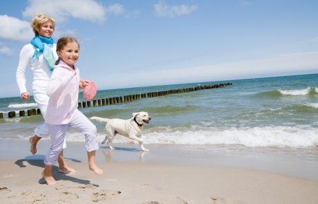 Een zorgeloze vakantie voor uw hond of kat