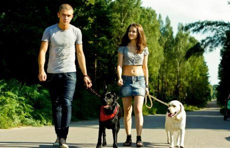 Datingsites voor en met huisdieren